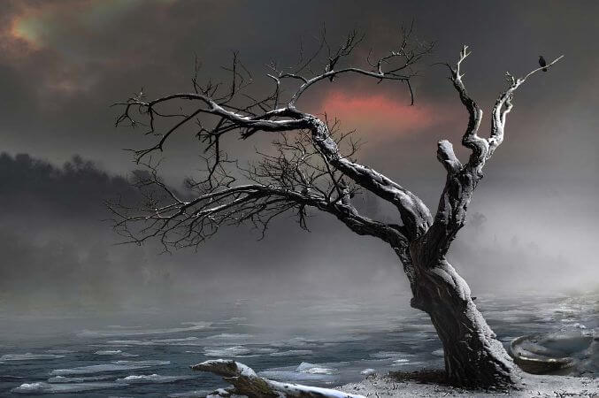 igor Zenin, ice Floes