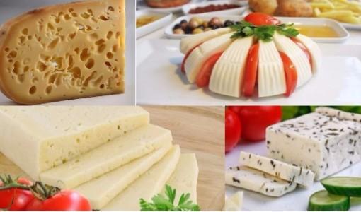 peynir cesitleri