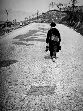 Fulvio Roiter, Sicilya, 1953