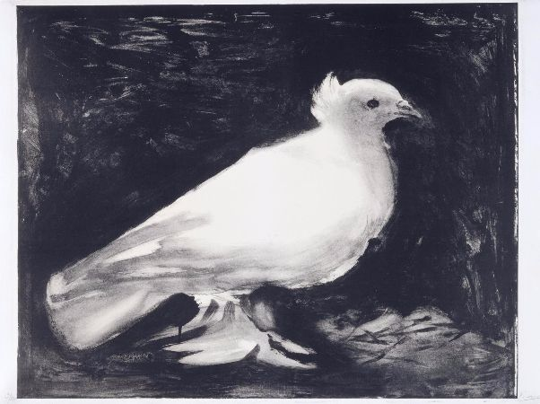 Pablo Picasso, Dove of Peace, 1949