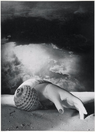 Dora Maar, Untitled (Hand and Shell), 1934