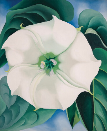 Georgia O'Keeffe, Jimson Weed-White Flower No. 1, 1932