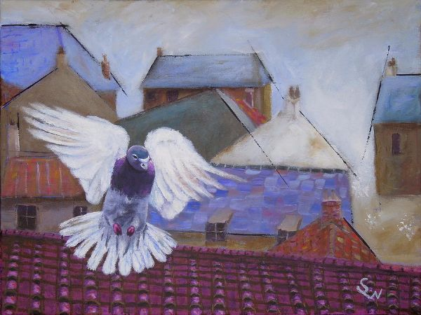 Shirley Wellstead, Urban Pigeon