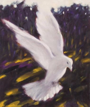 Vito Gramarossa, White Bird
