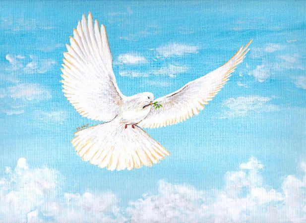 Yong Shing Sin, Peace Pigeon