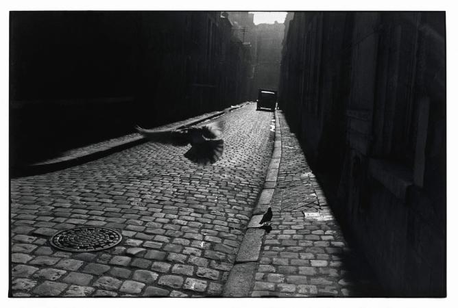 Elliott Erwitt, Fransa, 1955