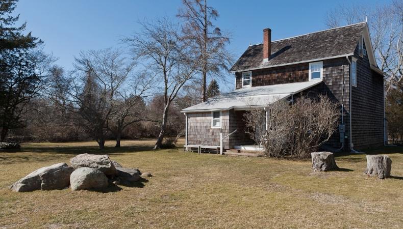 jackson pollock evi