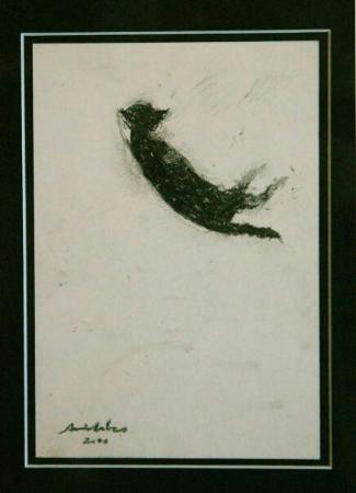 avni arbas Kedi, 2000