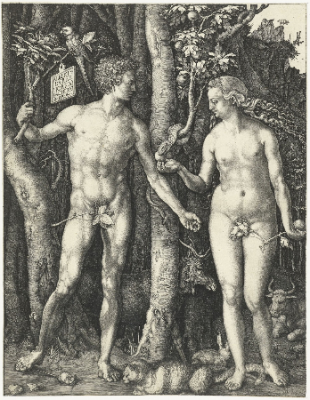Albrecht Durer, Adam and Eve, 1504