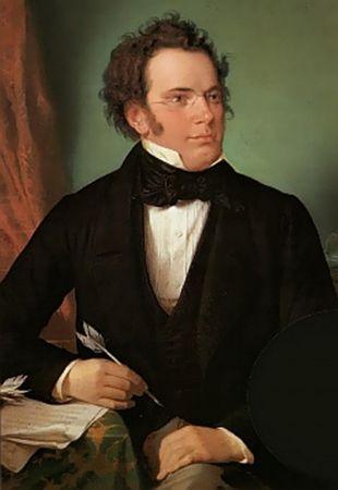 Wilhelm August Rieder, Franz Schubert, 1875