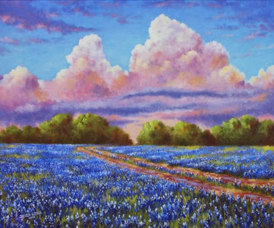 David G Paul, Rain For The Bluebonnets