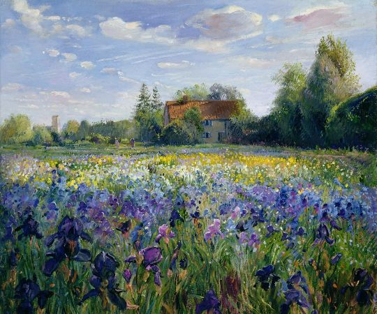 Timothy Easton, Evening At The Iris Field