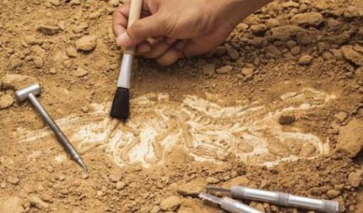 arkeoloji kazi