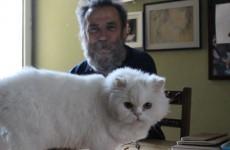 haydar ergulen ve kedisi