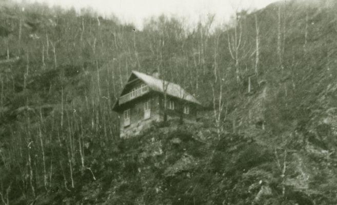 wittgenstein norvec kulube