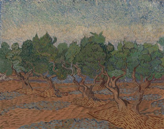 Van Gogh, Olive Grove, 1889