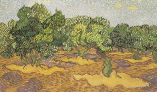 Van Gogh, Olive Orchard, 1889