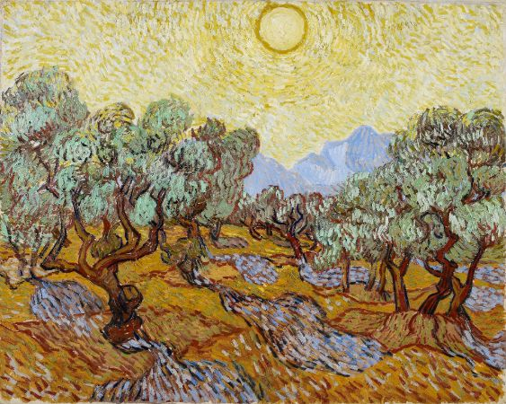 Van Gogh, Olive Trees With Yellow Sky And Sun, 1889