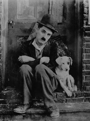 Dog's Life, 1918