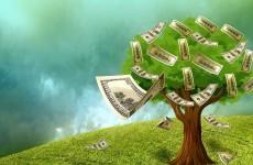 Ağaç Ve Dolar (1)