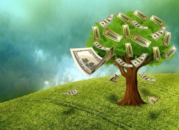 Ağaç Ve Dolar