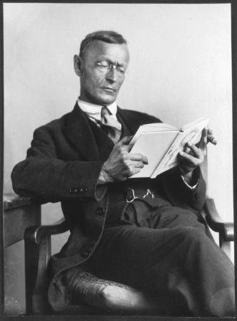 Herman Hesse Kitao Okurken