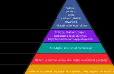 Maslow'un Piramidi (1)
