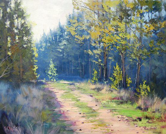 Graham Gerckhen, Sunny Corner Pine Forest