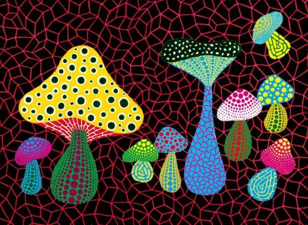 Mushrooms, 2005